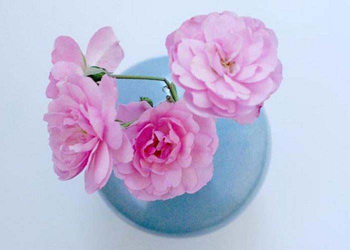 smakfoto-flowers1.jpg