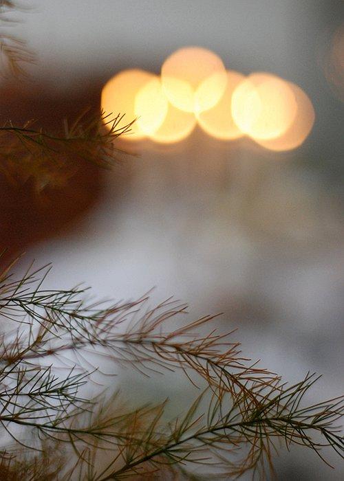 smakfoto-neujahr2.jpg